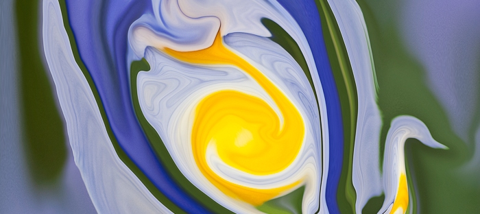 blue and yellow colors of the nature in a swan like fluid shape