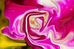 pink and red colors with shades of the nature in fluid shape