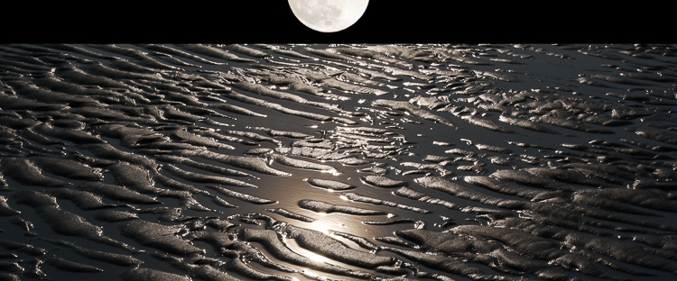 moonlight reflections on earth with water
