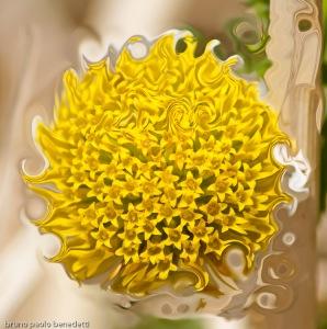 transfoming daisy pistils into curls