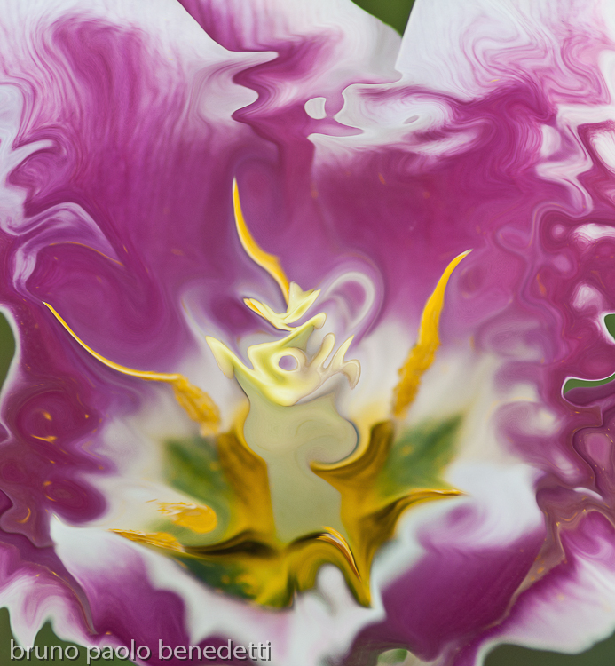 fluid abstract pistils on violet background
