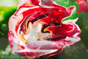 abstract non objective photography:fluid floating shape