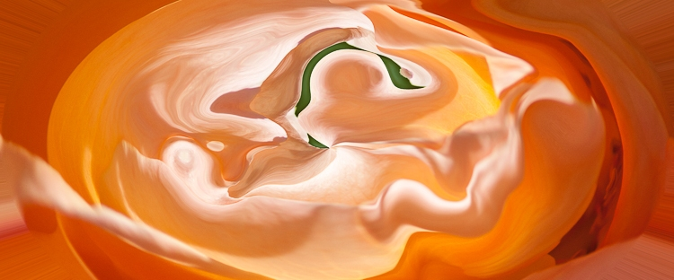 orange light and shade with many nuances and brillant tones in a womb like bright shape with red floating line inside on orange background