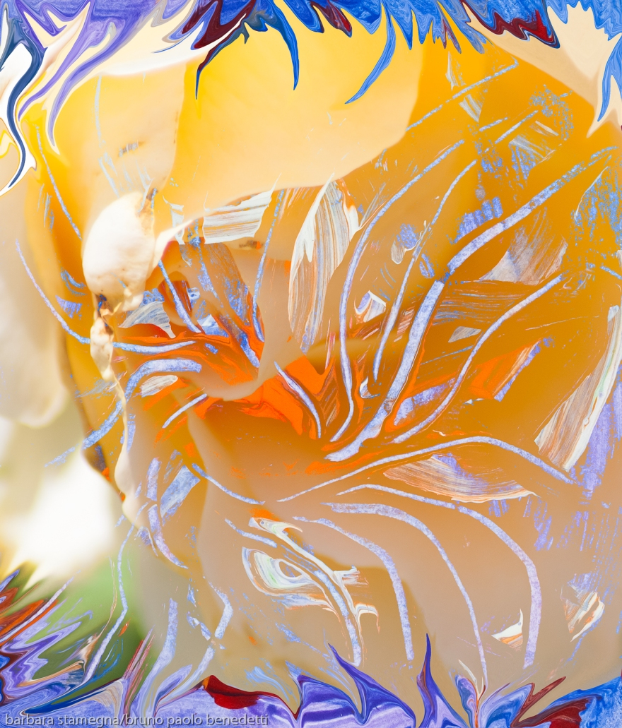 warm soft colors abstract art image with flower and pistils like moving shapes from inner orange color center